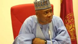 Saraki dissociates self from APP chairman