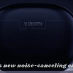 How do I reset my xiaomi true wireless earphones?