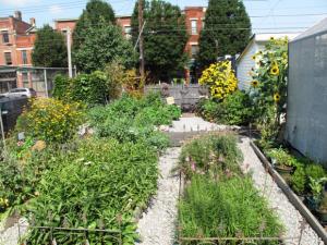 20141128192732-IGG-garden