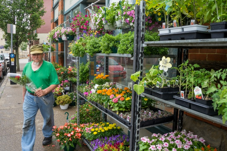 Flowers for sale on Shiloh Street. BC photo.
