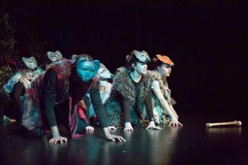 Gemini Theater Company