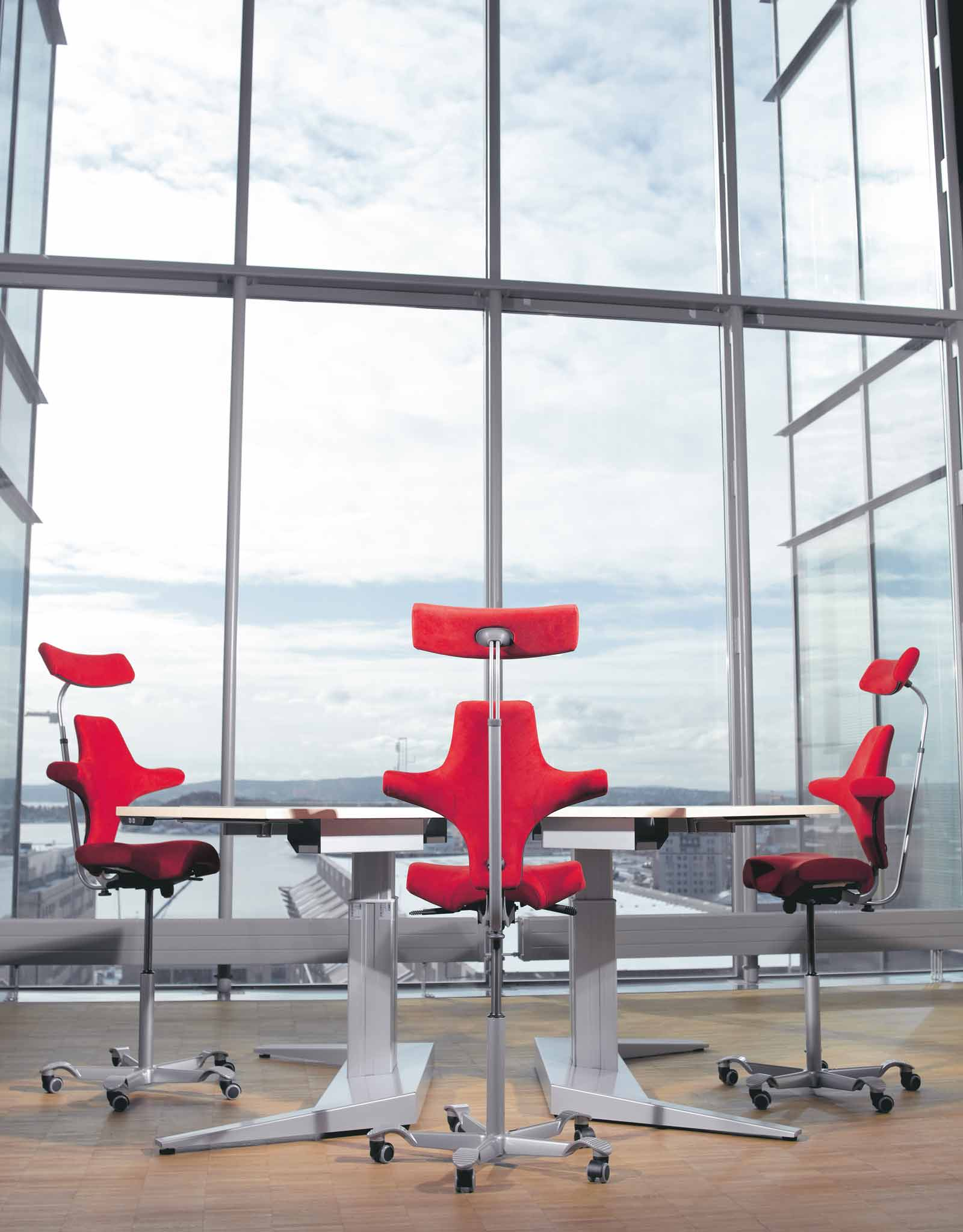 horse saddle office chair movie room chairs time to break free | hÅg capisco & puls task