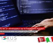 Offre d'emploi : développeur sous Hybris