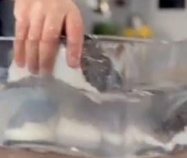 como demolhar bacalhau