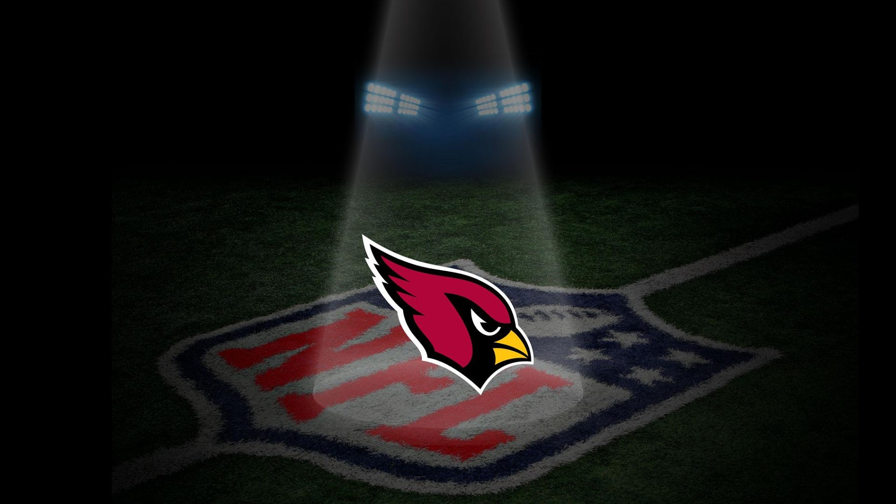 Guest Blog: Arizona Cardinals season recap by Tom Donlan
