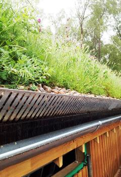 Avon Tyrrell Boathouse  - Organic Roofs
