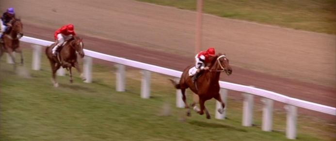 Image result for the movie phar lap