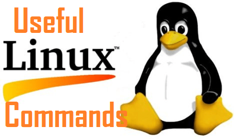 Useful Linux Commands for Beginners