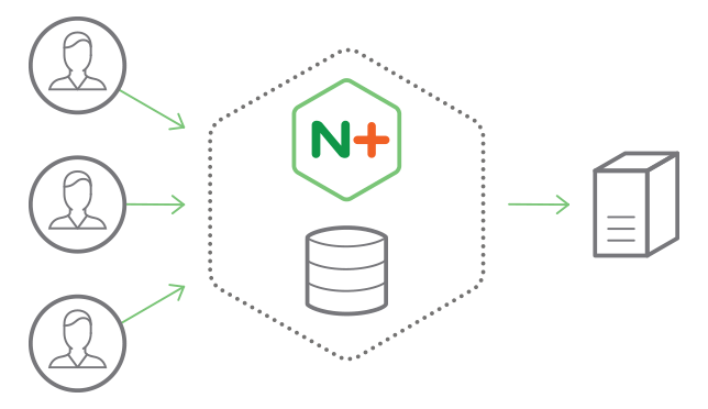 NGINX Plus software load balancer, web server, and cache