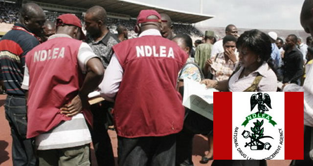 Functions of NDLEA and NAFDAC