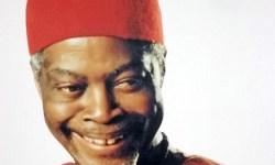 Chuba Okadigbo Biography