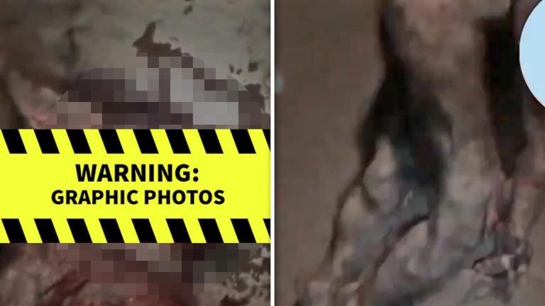 werewolf killed in nigeria