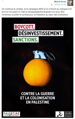 BDS france flyer