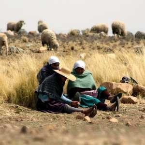 NGO Photographers Alliance Bolivia Digna