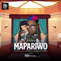 Download: Zinoleesky - Mapariwo
