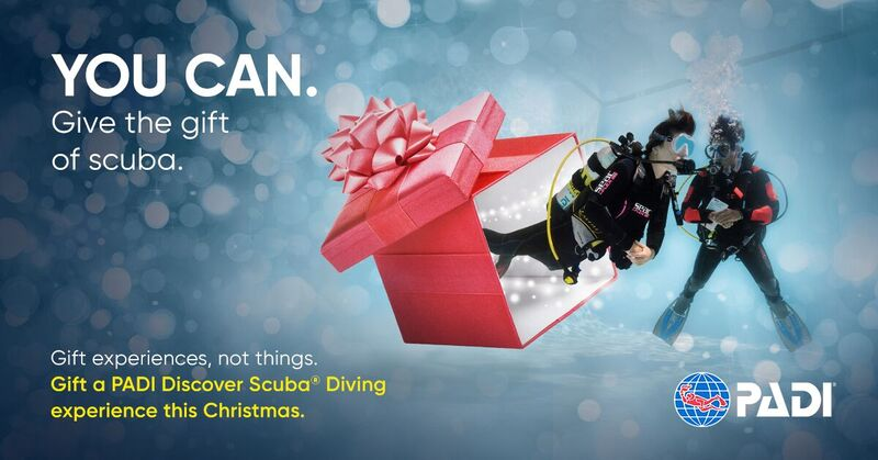 Give the gift of SCUBA - learn to dive