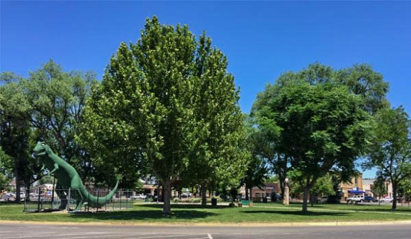 Circle Park in Fruita Colorado is a perfect place for a picnic!