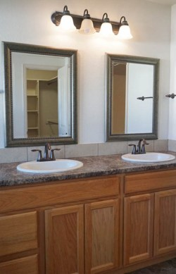 2992 Golden Hawk Master Bath vanity