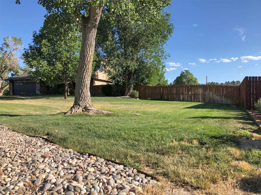 Large 1/2 acre lot has mature landscaping with irrigated sprinkler system