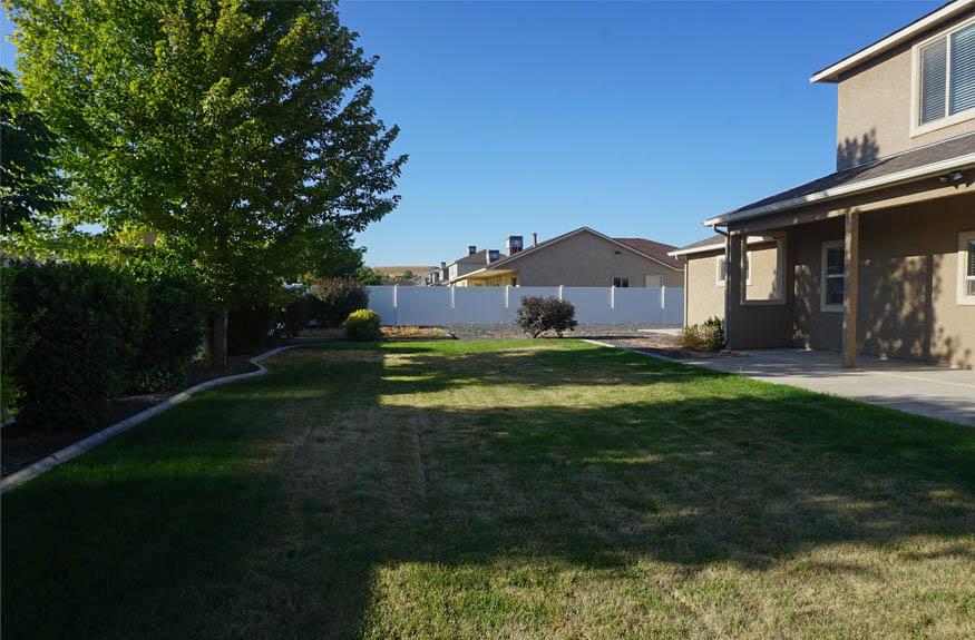 Large grassed back yard
