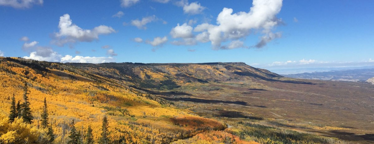 The Grand Mesa in Autumn with gold, yellow, orange, and red leaves.