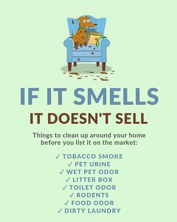 If it smells, it doesn't sell. Have you ever turned away in the entry of a home just because of the smell? ⁣⁣When you are selling your home, you want to make it as inviting as possible, and smell is a big part of that. ⁣