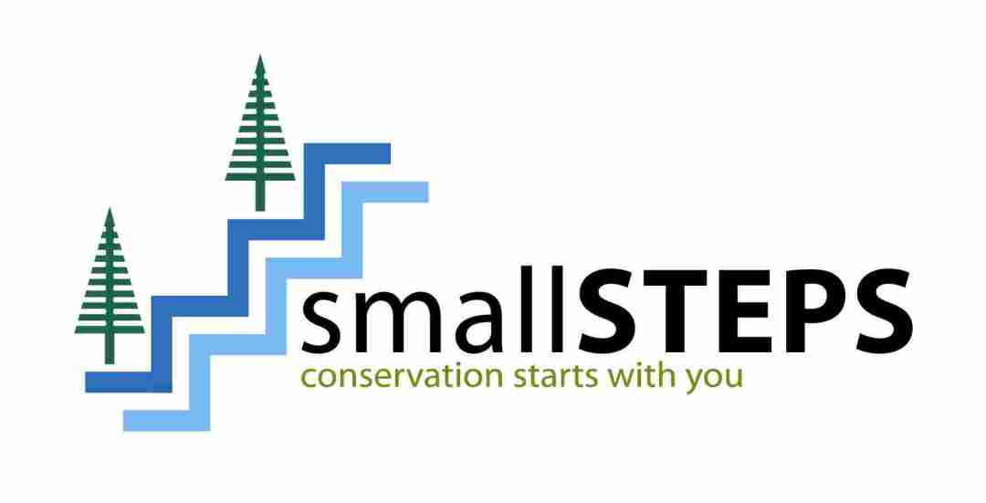 Small Steps Logo