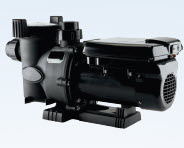 Picture of a swimming pool pump