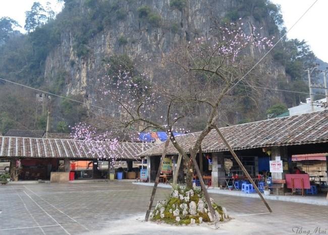 Phố Cổ Đồng Văn. Photo: TongMai
