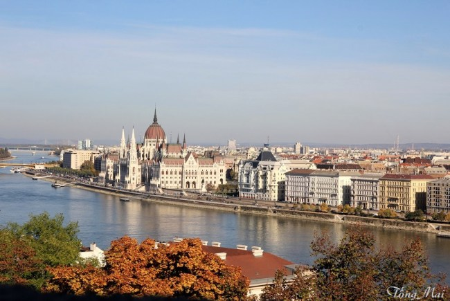 The Danube: view from the Citadel – Photo: Tống Mai.