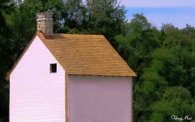 a Hoa va con gai o DC - VA - Luray Caverns Pink house1 p