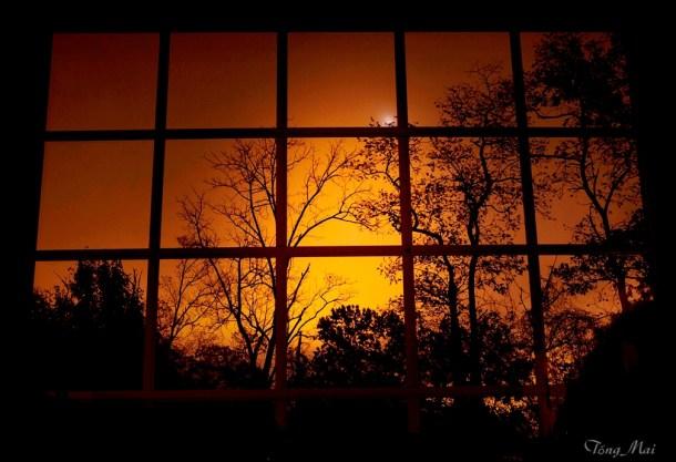 tongmai-2016-autumn-night-behind-my-window