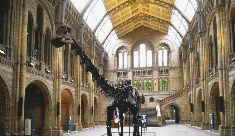 Image result for Natural History Museum in London