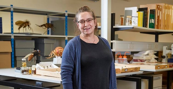 Senior Curator Dr Erica McAlister (Credit: Channel 5)
