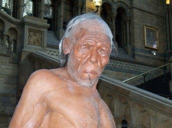 Homo-sapiens-model