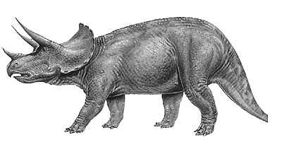 Image result for triceratops