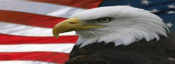 EagleandFlag 1