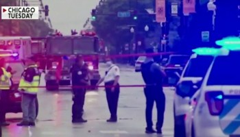 Chicago native sounds the alarm: 'Something has to happen' to stop the violence