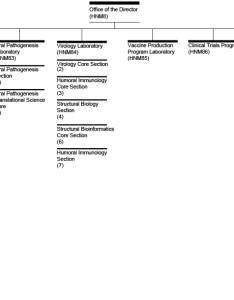 Vaccine research center organizational chart also nih national rh niaidh
