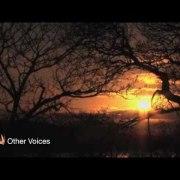 Rubberbandits, Brilliant: Listen to Rubberbandits & Willie O'Dea on Liveline