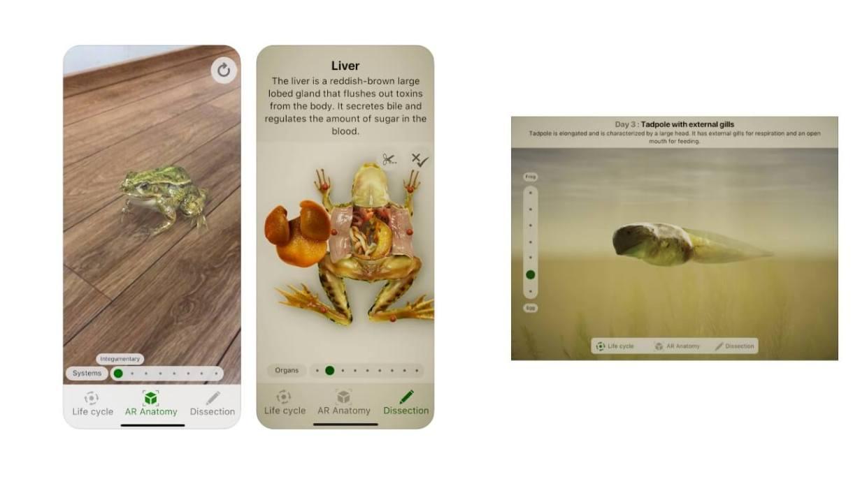App realtà aumentata iPhone - Froggipedia