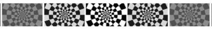 Checkerboard visual stimulus