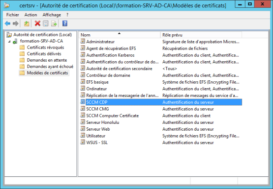 Certificate template added into the console