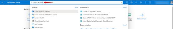 Verify Cloud Services name