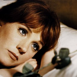julie andrews awesome (23)