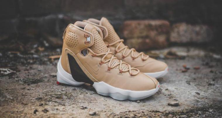 04d2d9d59822 Nike LeBron 13 Elite