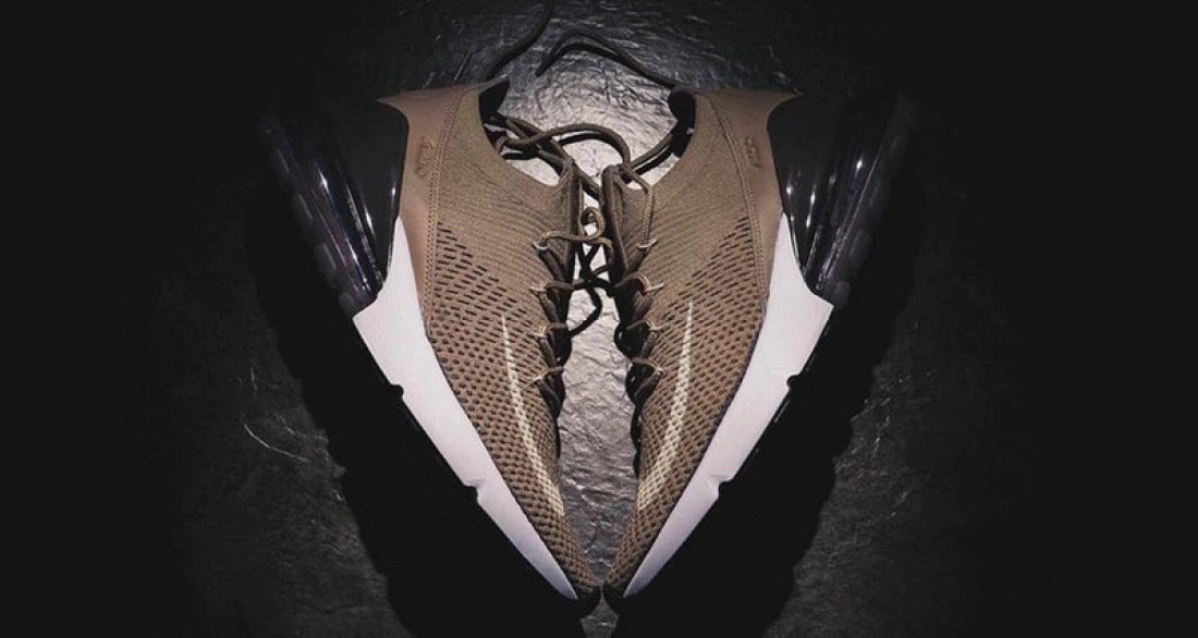 "Nike Air Max 270 ""Brown"""