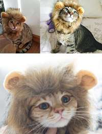 Halloween Cat Dog Lion Mane Wigs Costumes Factory Manufacturer