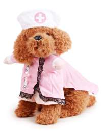 Pet Dog Cat Halloween Costume Doctor Nurse Costume ...