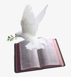 Holy Spirit Dove Png - Bible With Dove Png Transparent PNG - 1024x820 -  Free Download on NicePNG